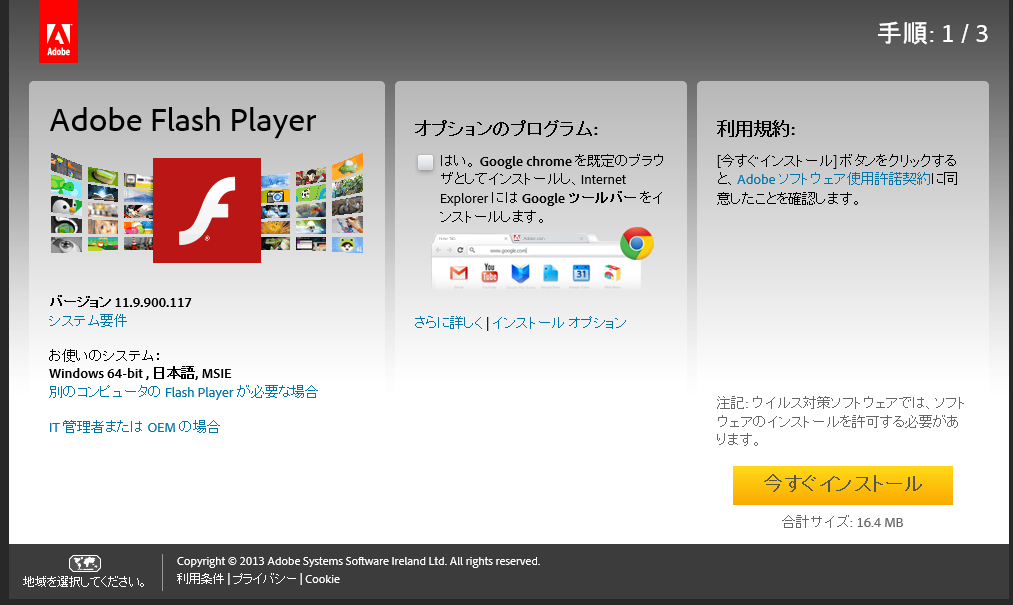 Flash_Option_NoCheck_IE2.png
